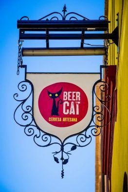 beercat 1