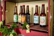 beercat birres